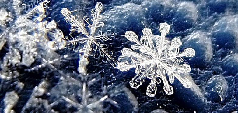 Зимняя Психологическая Школа 2019. 1-3 февраля. Воронеж